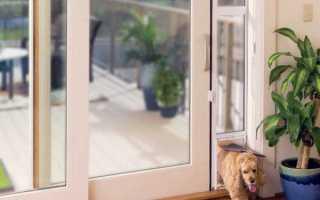 Двери для собак – свобода вашему питомцу